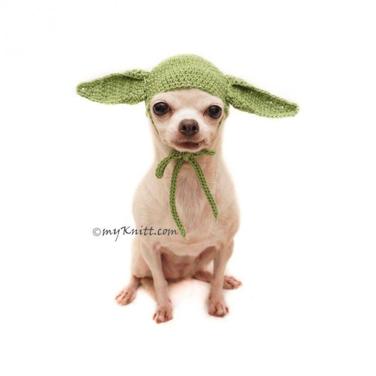 Cosplay Master Jedi Dog Costume via Etsy (My Knitt)