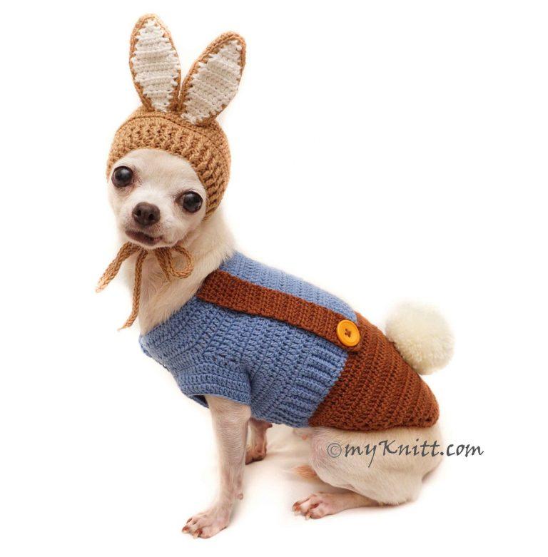 Peter Rabbit Inspired Pet Costume via Etsy (My Knitt)