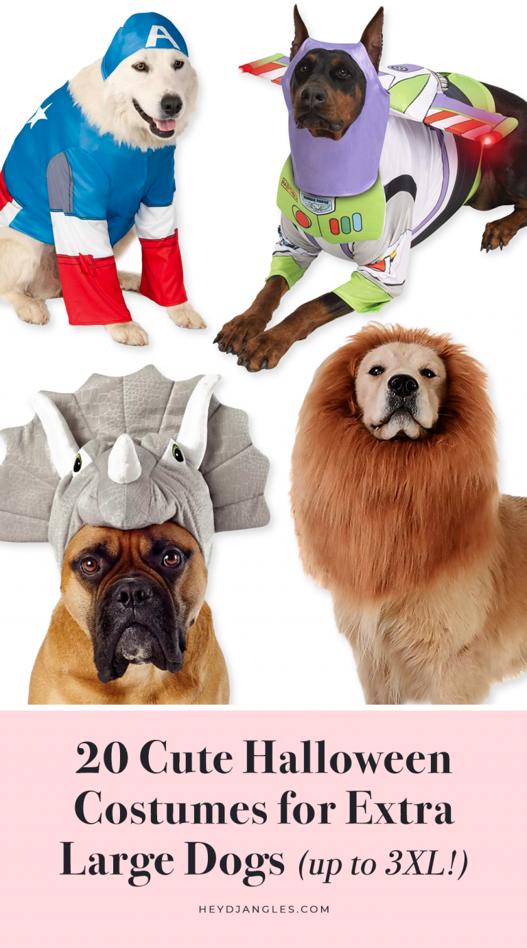 20 Cute Halloween Costumes for Extra Large Dogs (up to 3XL!) - Halloween Costumes for Big Dogs, XL, XXL, XXXL dog breeds.