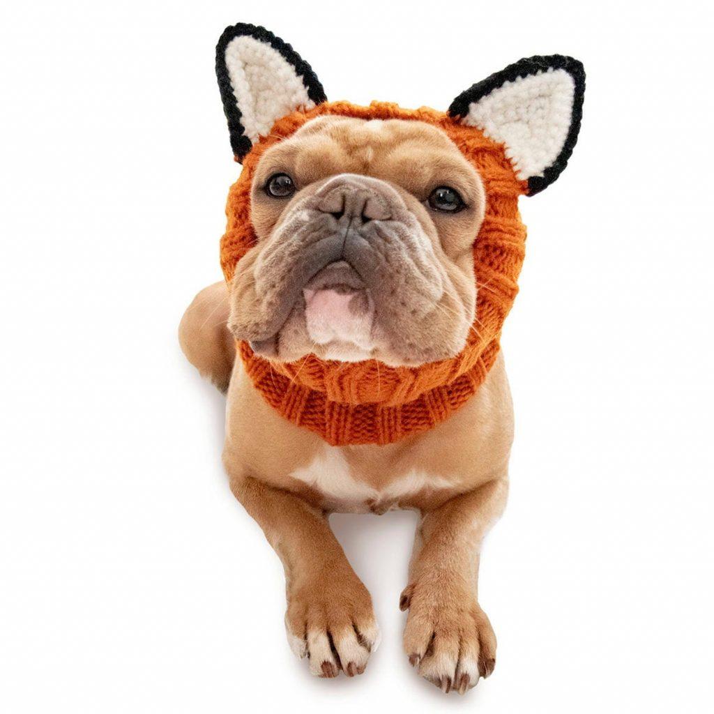 Fox Dog Snood via ZooSnoods on Etsy.