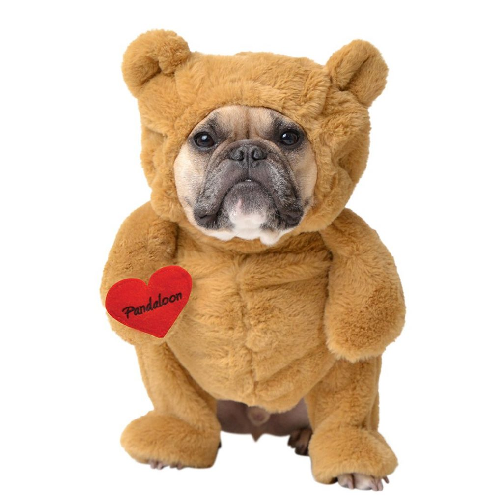 Teddy Bear Dog Costume by Pandaloon via Amazon. Halloween Costumes for French Bulldogs.