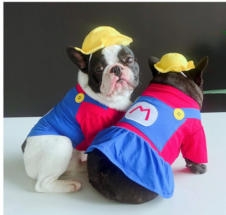 Super Mario Inspired Dog Costume via FitFrenchieon Etsy. Halloween Costumes for French Bulldogs.
