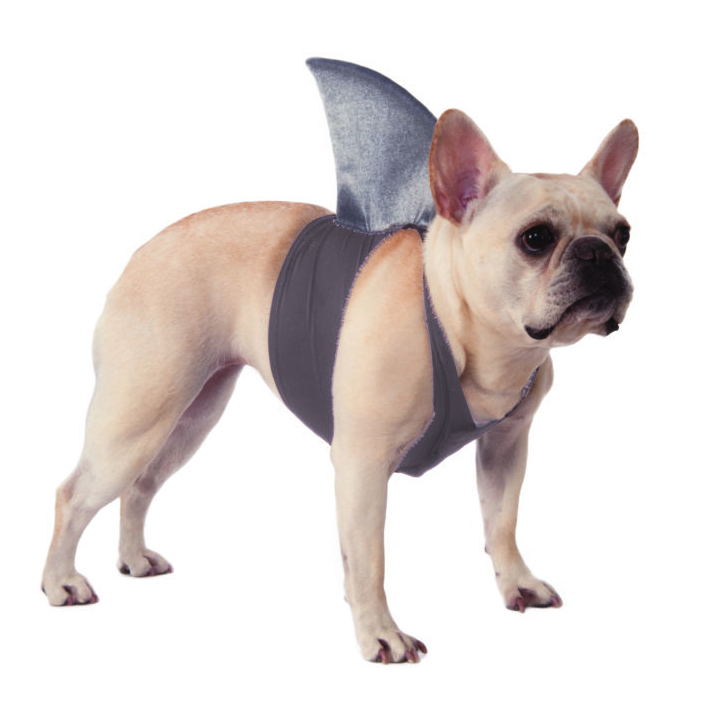 Shark Fin Dog Costume by Rubie's Costumes on Amazon.