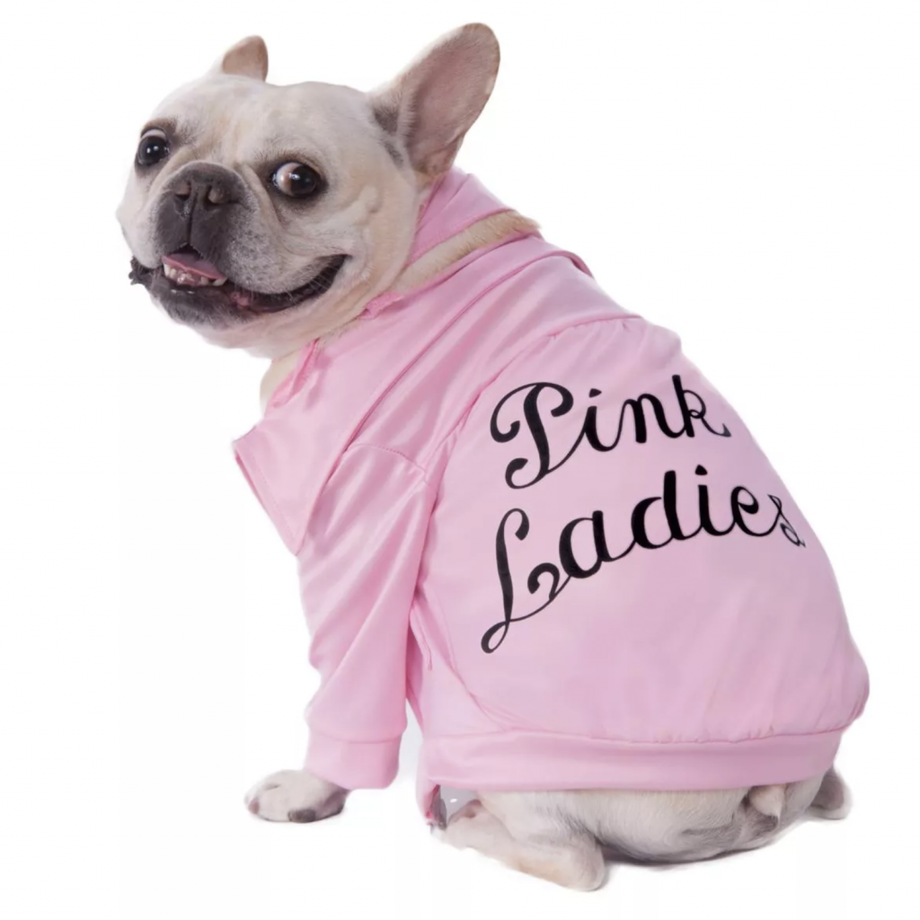 Grease Pink Ladies Pet Costume by Pure Costumes via Target.