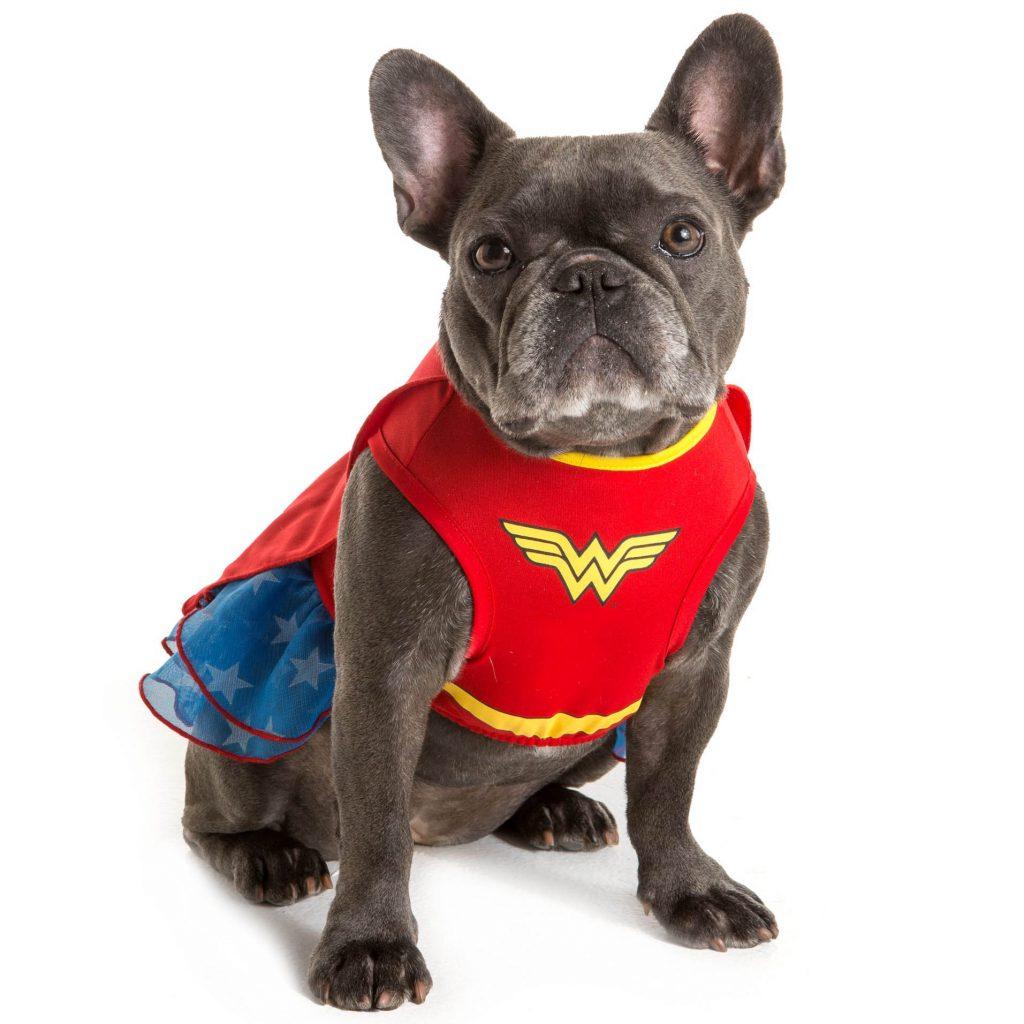 Wonderwoman Dress Pet Costume by DC Comics™ from Petsmart. Halloween Costumes for French Bulldogs.