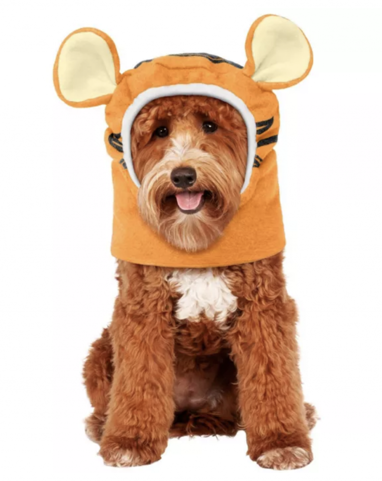 Halloween Costumes for Goldendoodles - Tigger Pet Headpiece by Rubie's Costume Company via Target