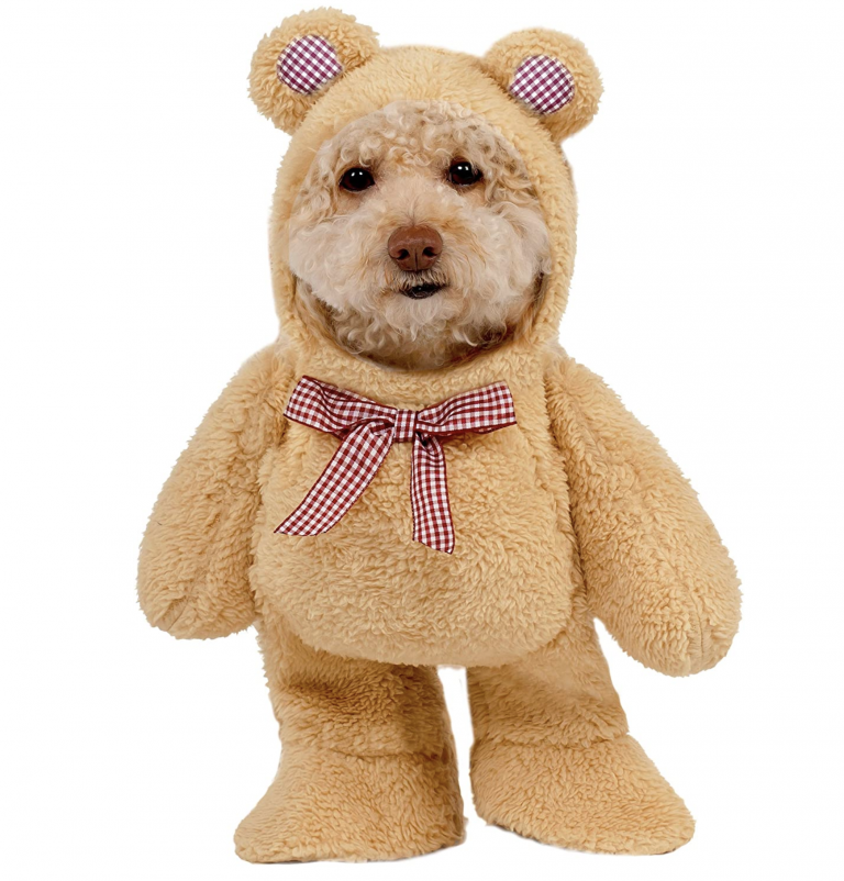 Halloween Costumes for Goldendoodles - Rubie's Walking Teddy Bear Pet Suit via Amazon