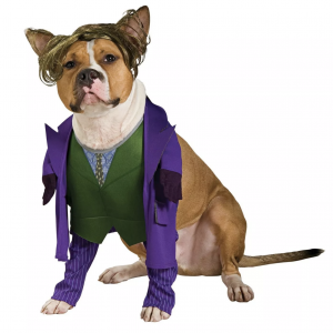 Joker Dog Costume by Rubie's Costume Company from Target.