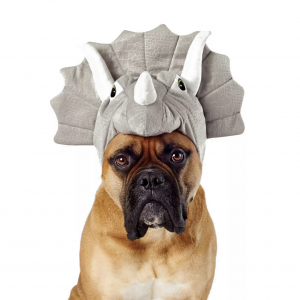 Triceratops Dog Costume by Hyde and EEK Boutique via Target.