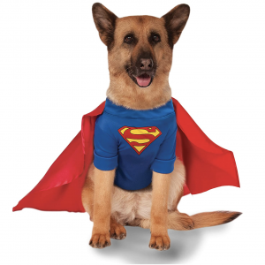 Superman Shirt and Cape Pet Costume by Rubie's Costume Company via Amazon, Halloween Costumes for Extra Large Dogs.