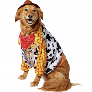 Toy Story Woody Dog Costume via Chewy, Halloween Costumes for Extra Large Dogs.