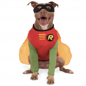 Teen Titans Robin Pet Costume by Rubie's Costume Company on Amazon, Halloween Costumes for Extra Large Dogs.