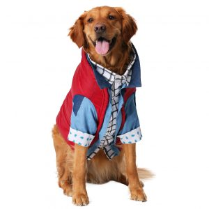 Marty McFly Back to The Future Dog Costume by Fun Costumes via Amazon, Halloween Costumes for Extra Large Dogs.