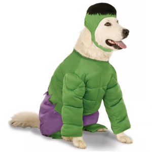 Hulk Big Dog Pet Costume via Pure Costumes from Target, Halloween Costumes for Extra Large Dogs.