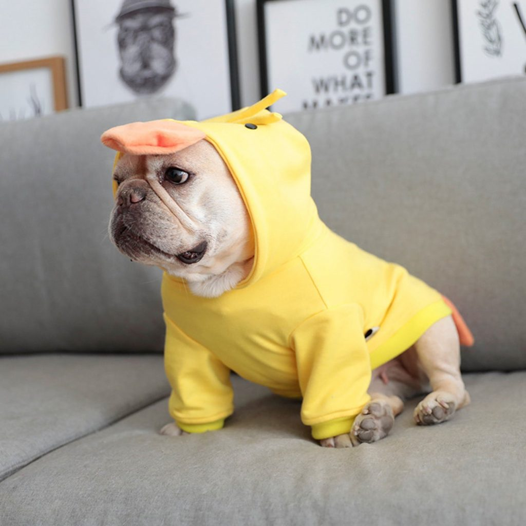 Little Yellow Duck Dog Hoodie via FitFrenchie on Etsy.