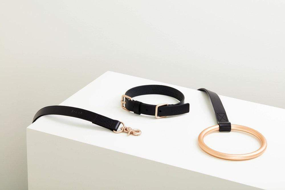 16 Luxury High-End Dog Collars and Leashes for Pampered Pups feat. Boo Oh 'Lumi' Gold & Black Leather Collar & Leash (image and available via Design-Milk)