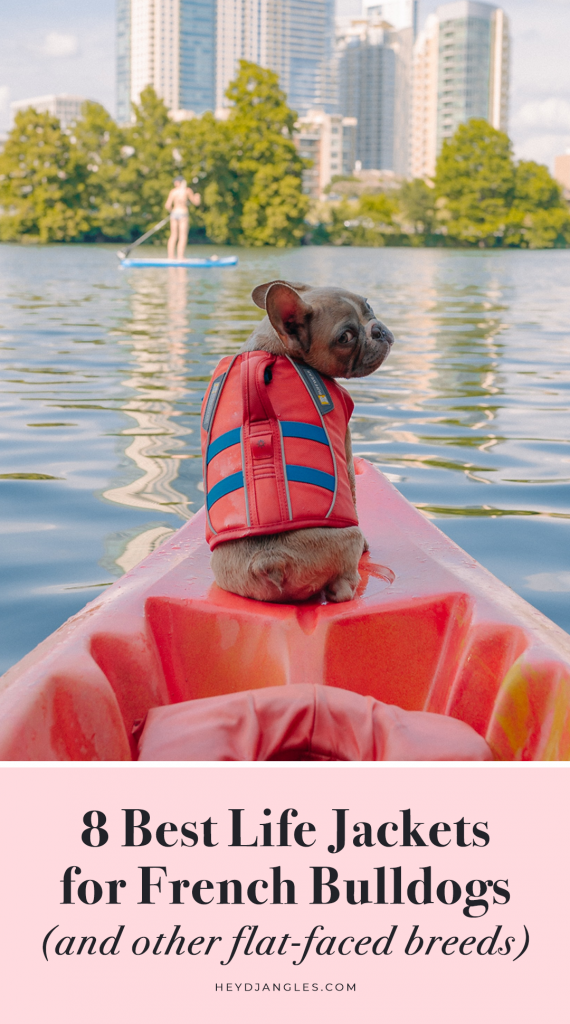 8 Best Life Jackets for French Bulldogs and Other Brachycephalic Dog Breeds