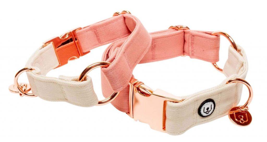 Collar - Eat Play Wag (via Design-Milk)