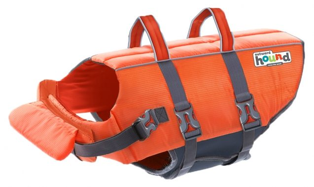 8 Best Life Jackets for French Bulldogs and Other Brachycephalic Dog Breeds - feat. Outward Hound 'Granby' Ripstop Life Jacket via Amazon