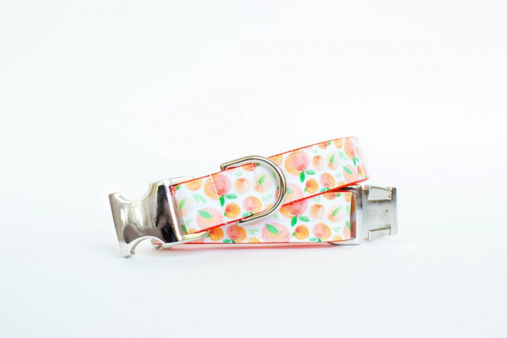 ROUND-UP: Peach Dog Accessories feat. Peach Collar from Pecan Pie Puppies (Etsy)