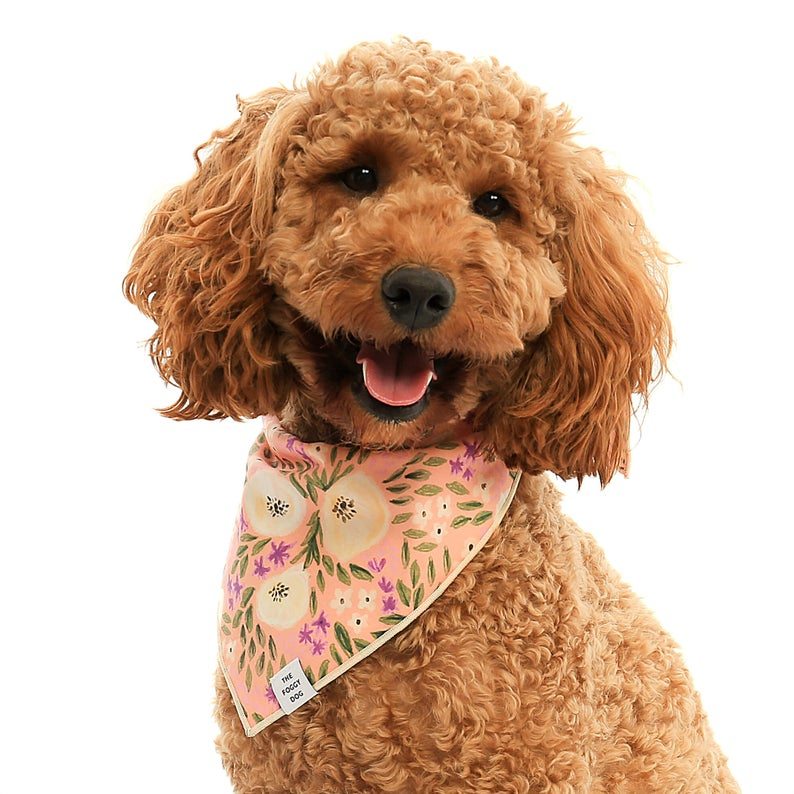 ROUND-UP: Peach Dog Accessories feat. Pink Floral Bandana from The Foggy Dog (Etsy)