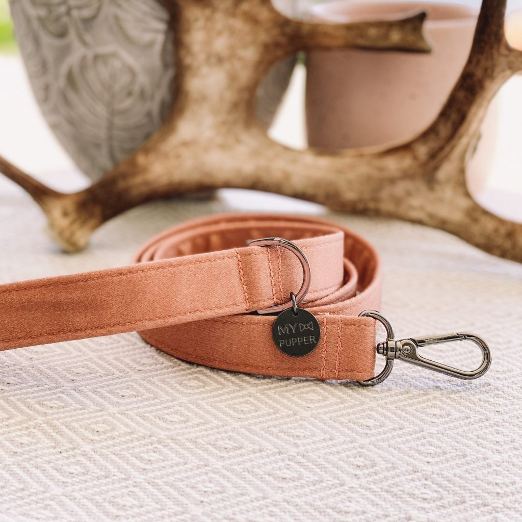 ROUND-UP: Peach Dog Accessories feat. Terracotta Leash from My Pupper (Etsy)