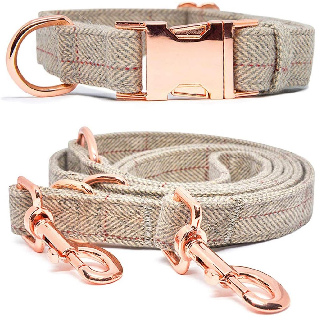 Elegant Beige & Rose Gold Collar & Leash Set via Amazon