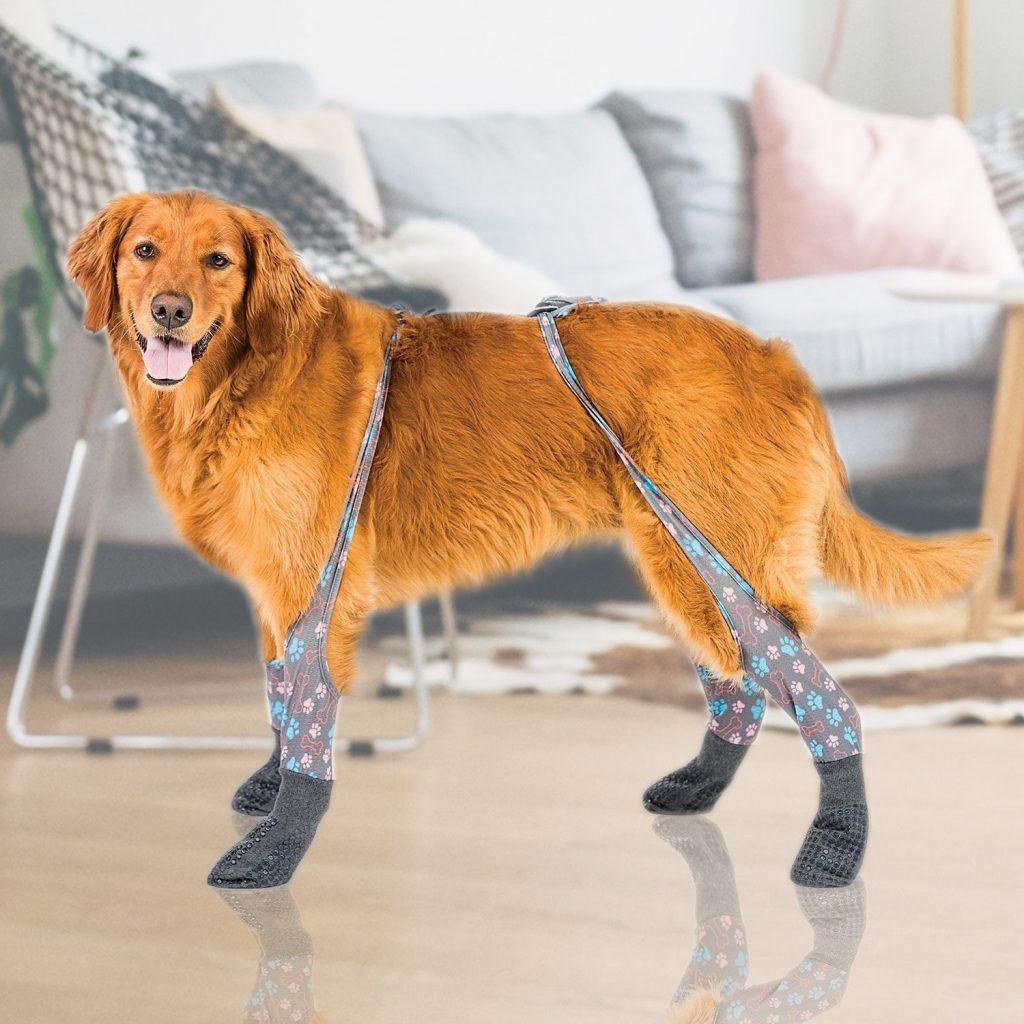 Indoor Walkee Paws Dog Leggings with Grippy Socks via Walkee Paws