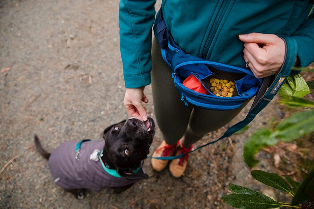 17 Best Fanny Packs and Bags for Dog Walking - feat. Ruffwear Home Trail Hip Pack (Image via Ruffwear)