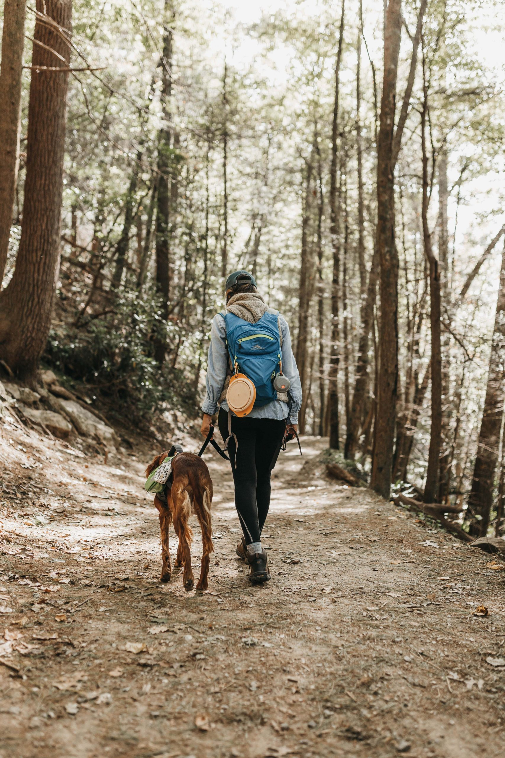 9 Best Dog Walking Shoes for Women - Image by Camylla Battani via Unsplash.