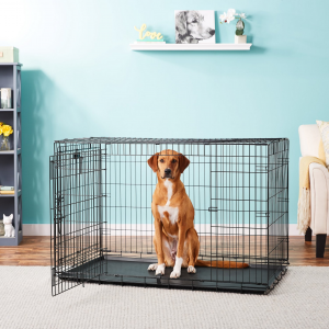 13 Practical Dog Crates for Big Dogs (up to XXXL) - feat. Precision Pet Products Provalu Double Door Collapsible Wire Dog Crate (XL – 48-inch), Image via Chewy.