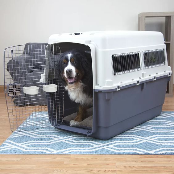 'Polley' XXXL Premium Plastic Dog Crate Carrier - Tucker Murphy Pet, via Wayfair - dog crates for big dogs.