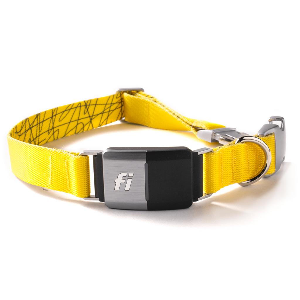 Fi Series 2 Smart Dog Collar - GPS Tracker & Activity Monitor