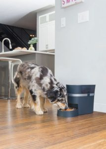 PETSAFE Smart Feed Automatic Dog and Cat Feeder (WiFi) via Amazon