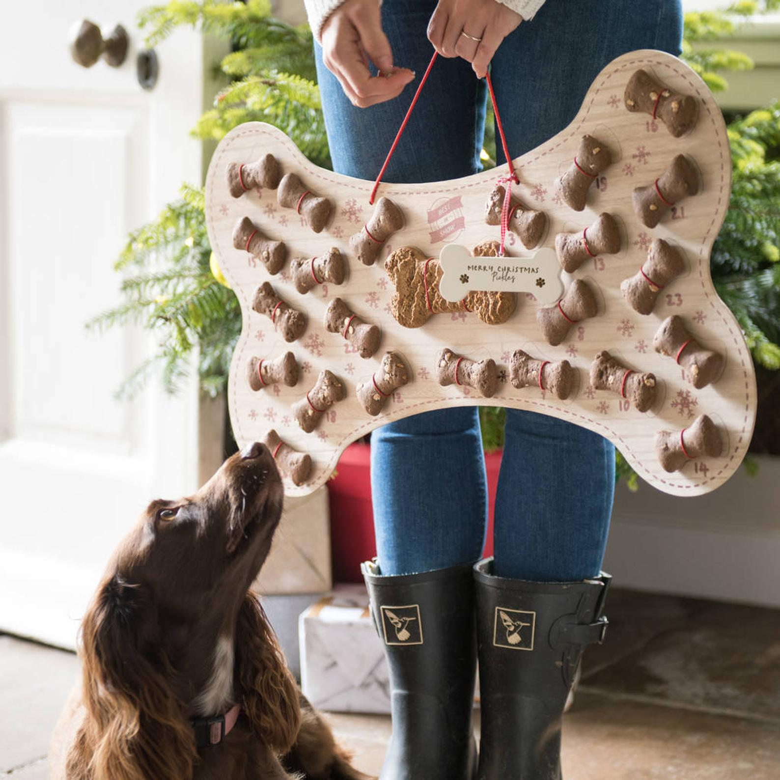 16 Super Cute Dog Advent Calendars for 2020 feat. 'Refillable Dog Biscuit Advent Calendar' (via LetterRoom/Etsy)