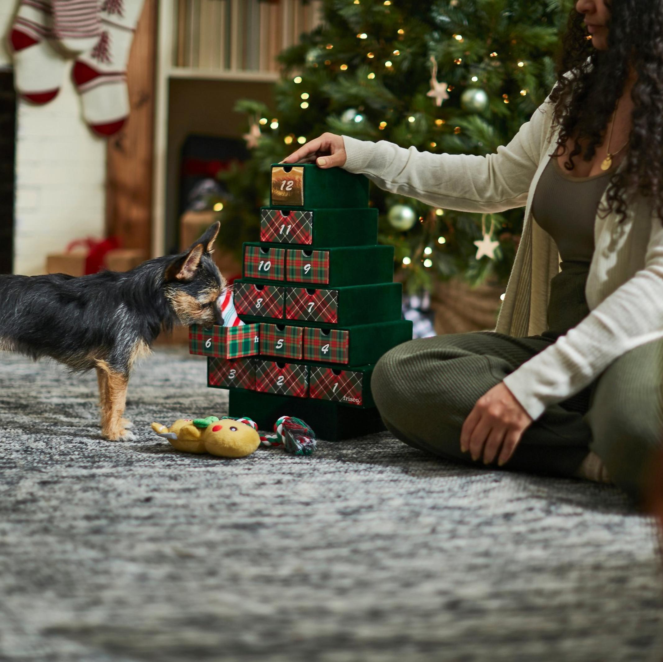 'Frisco 12 Days of Christmas Toy Advent Calendar' (via Chewy)