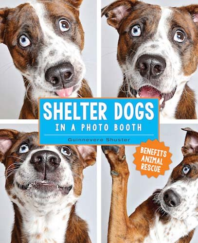 'Chelter Dogs in a Photo Booth' by Karin Hiselius - Dog Coffee Table Books
