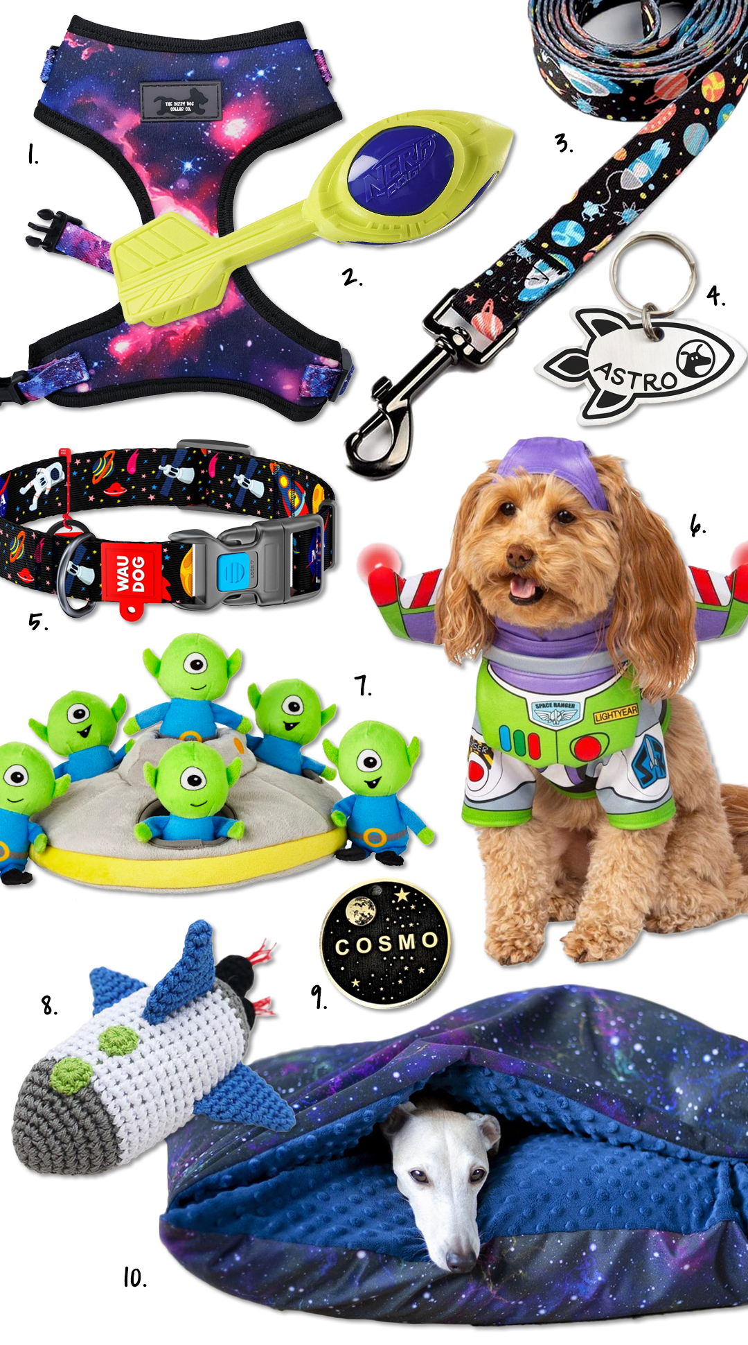 135 Space and Astronomy Inspired Dog Names + Dog Accessories - Hey, Djangles.