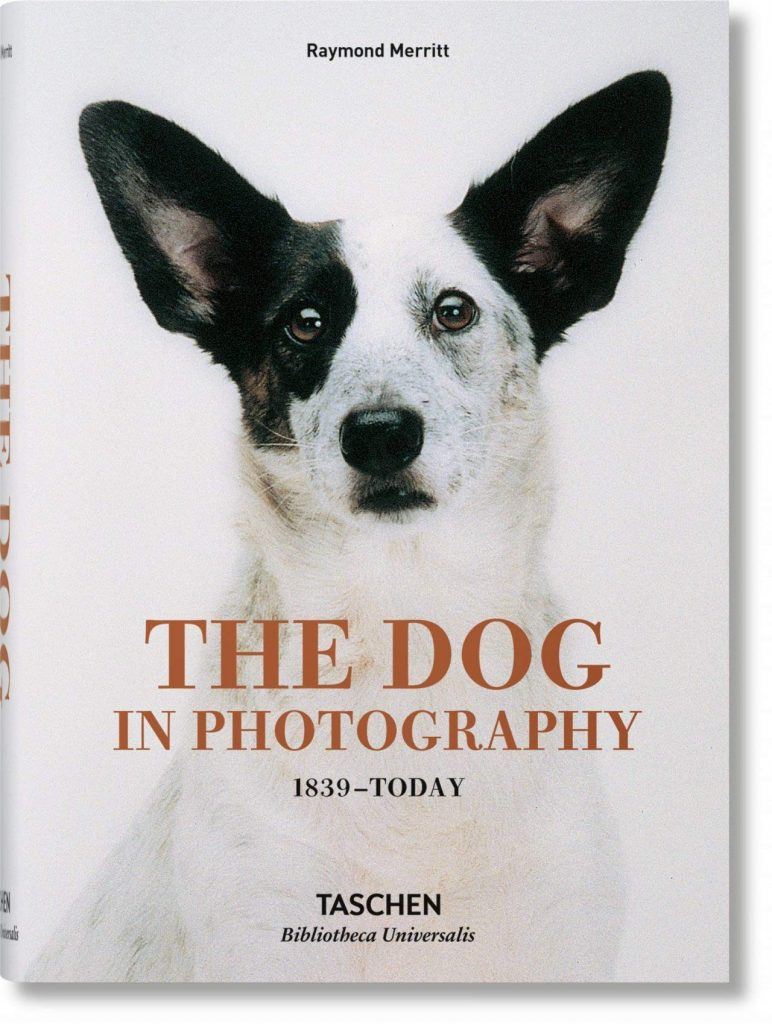 'The Dog in Photography 1839- today' by Raymond Merritt - Dog Coffee Table Books
