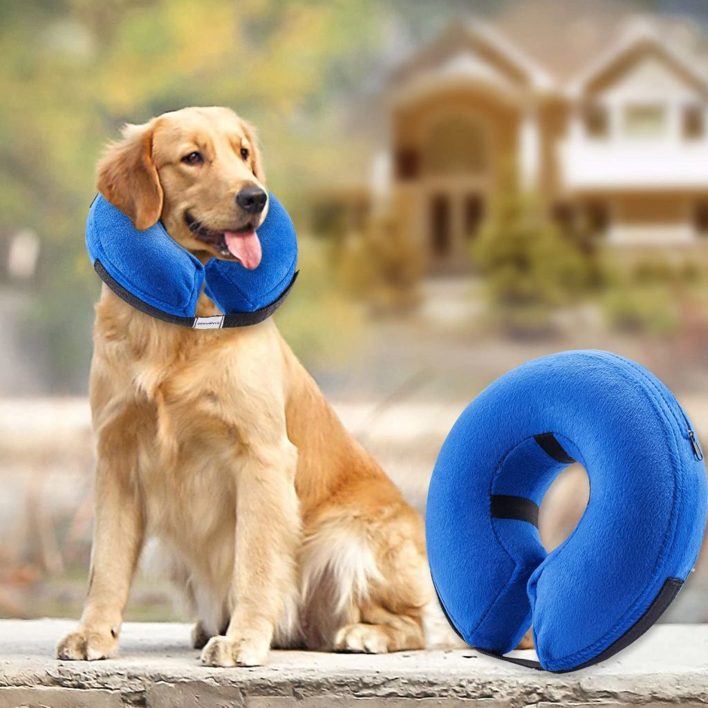 Inflatable e-Collar via Amazon, first aid kit for dogs
