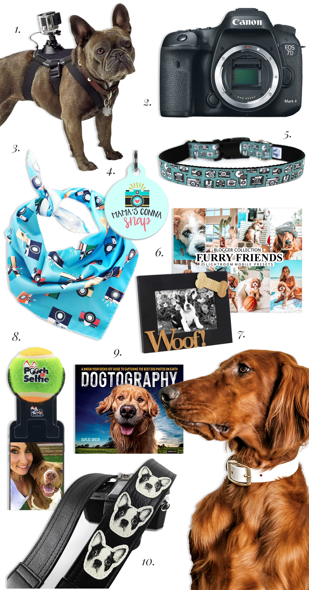 40 Photography Related Dog Names and Accessories - Hey, Djangles. Dog themed accessories for photography lovers.