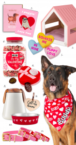 11 Cute Valentine's Gifts for Dogs - Valentine's Day gift ideas for your dog, pampered pooch, spoiled dog, dog lover, fur kids, my dog is my Valentine #valentinesgifts #bemyvalentine #doglover #giftguide