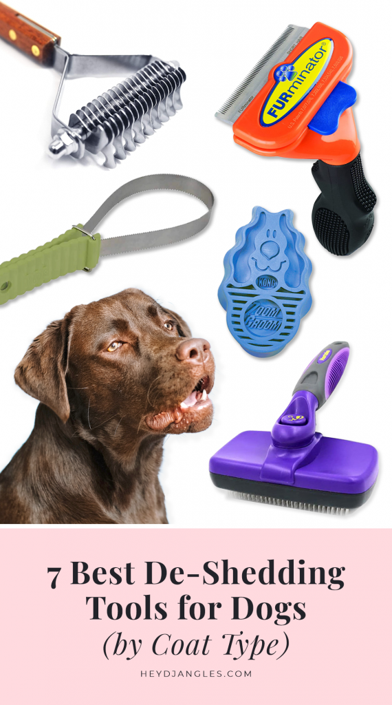 7 Best DeShedding Tools for Dogs (by Coat Type) - featuring brands such as FURminator, Zoom Groom, Safari and Hertzko, slicker brush, undercoat rake, rubber brush, shedding blade, grooming tools for dogs that shed. Chocolate Labrador.