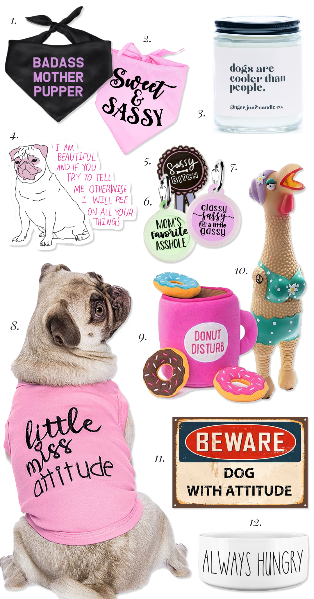 Sassy Dog Accessories with Attitude, Hey, Djangles.