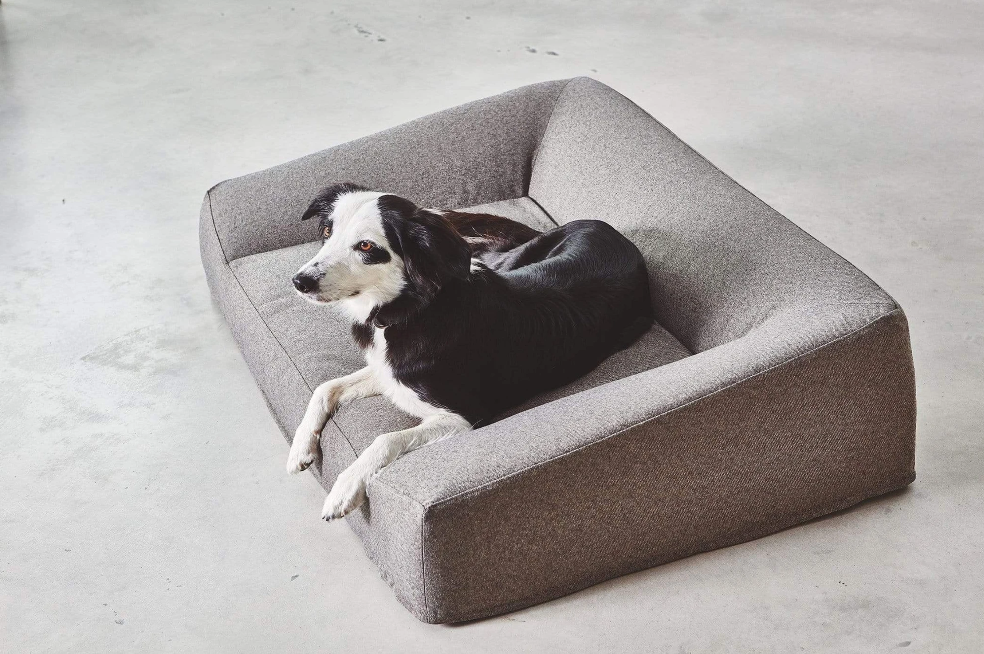 'Luna' Dog Bed by MiaCara via DesignMilk