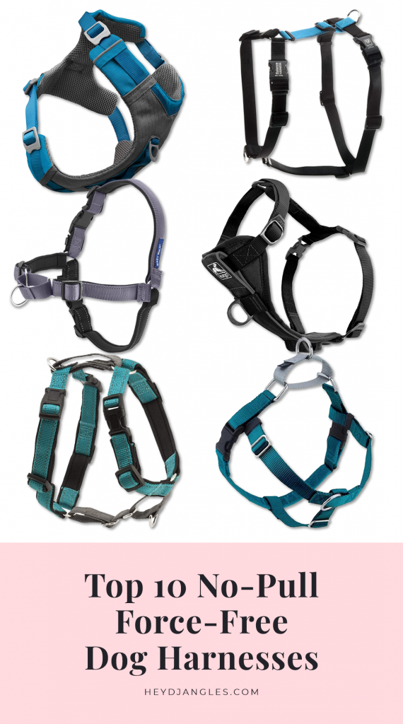 Top 10 No Pull Dog Harness Options - feat. brands such as PetSafe, Kurgo, 2 Hounds Design, Blue-9 and more. Force-free dog training tools. Anti-pull dog harnesses.