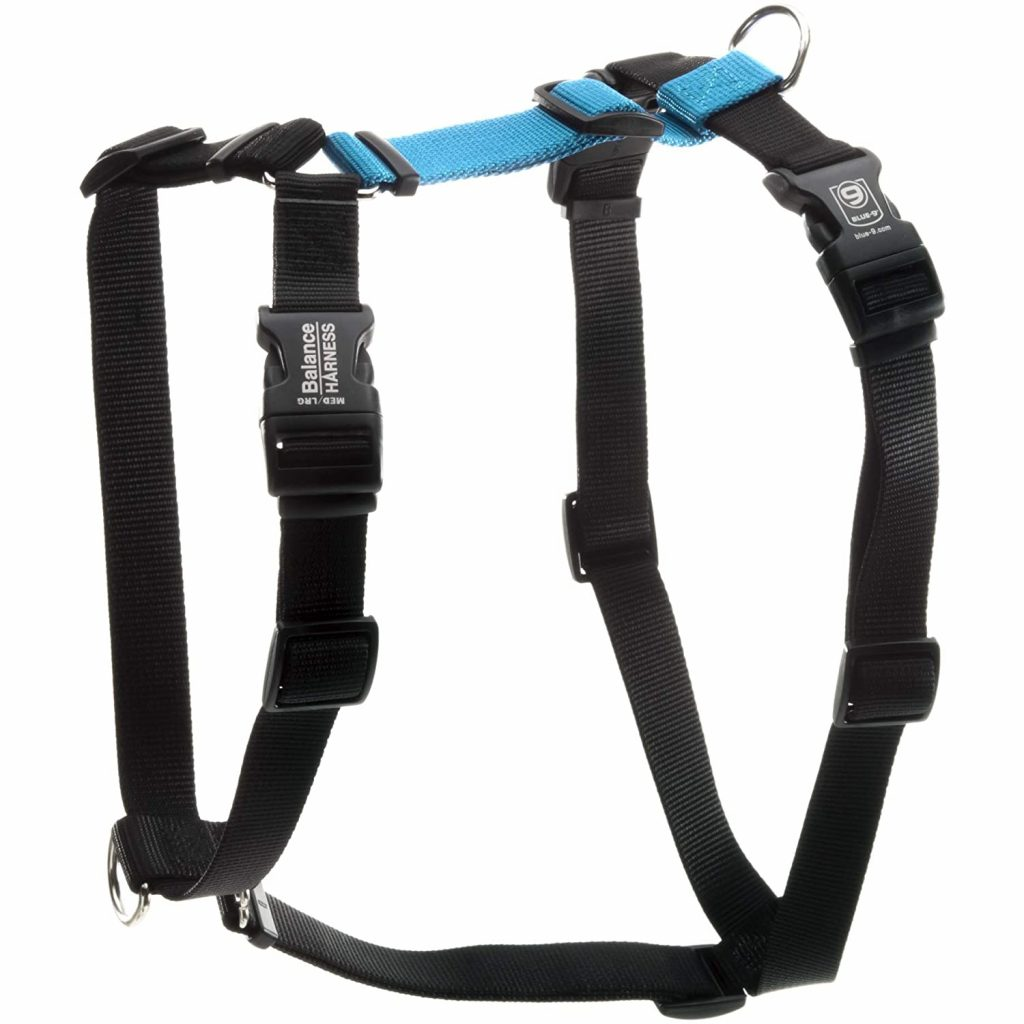 Blue-9 Buckle-Neck Balance Harness, image via Blue-9