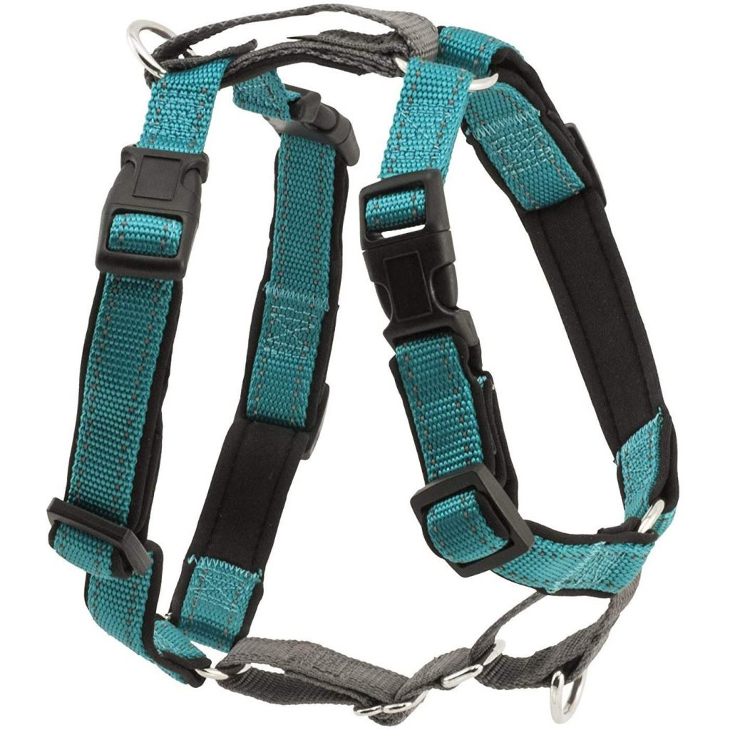 PetSafe 3 in 1 No Pull Dog Harness, image via PetSafe