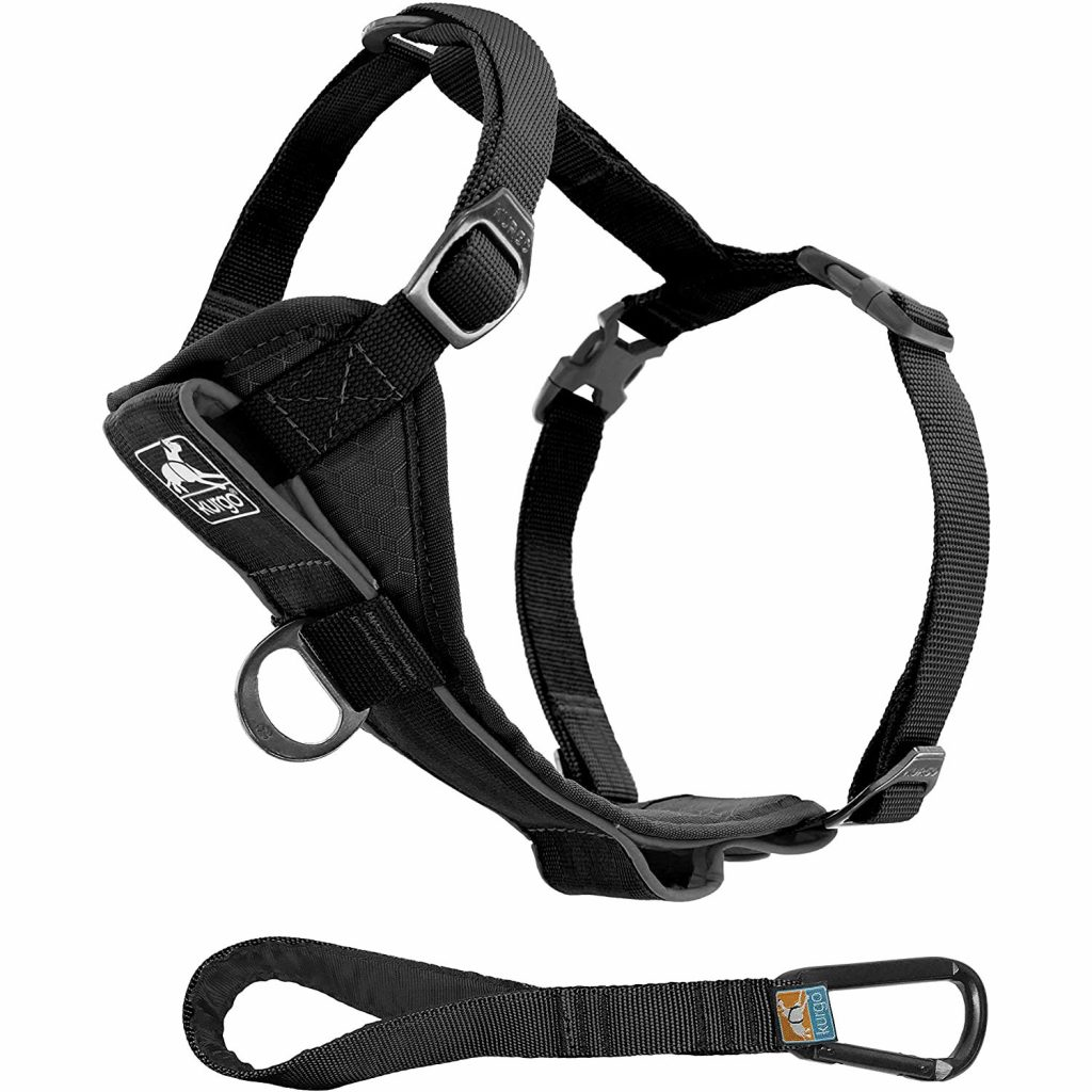 Kurgo Tru-Fit Smart Dog Harness, image via Kurgo