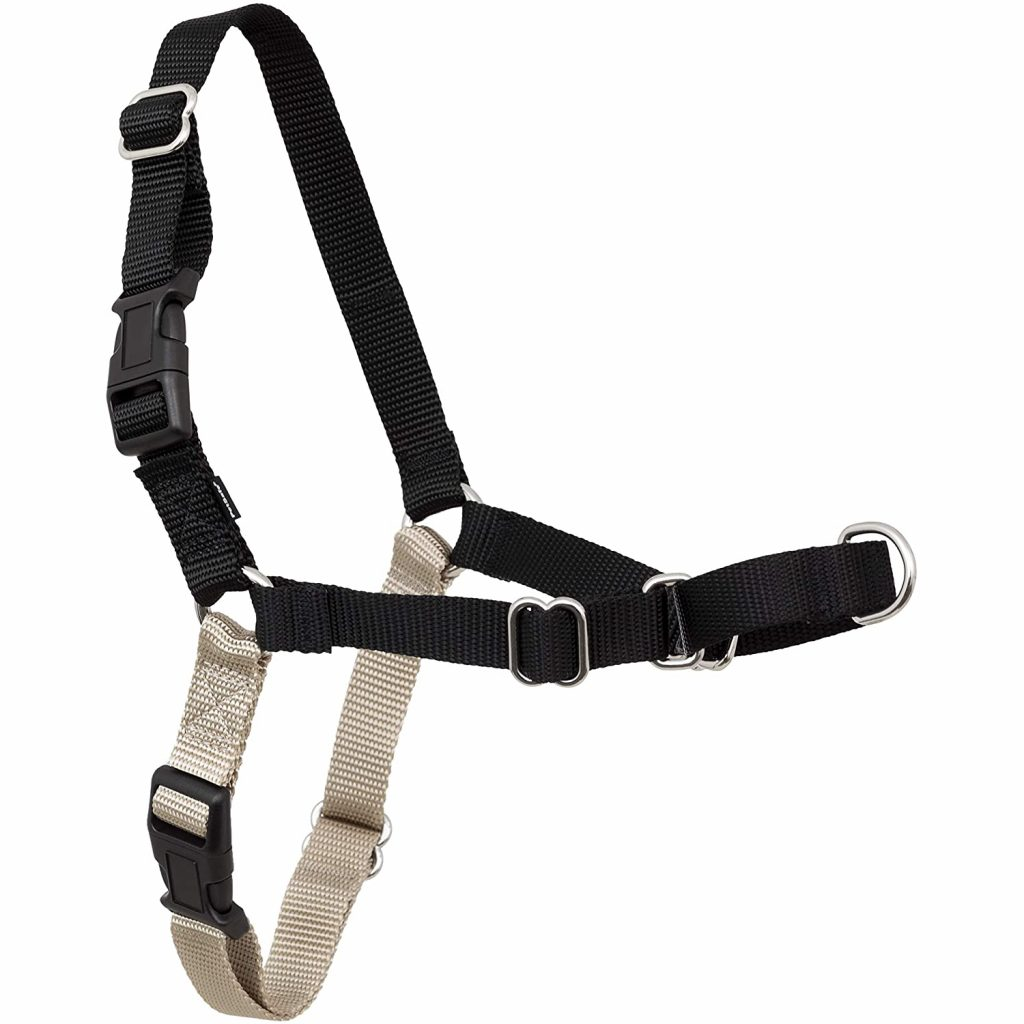 PetSafe Easy Walk No Pull Dog Harness, image via PetSafe